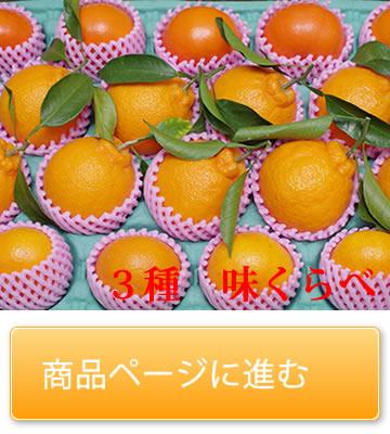 田中果樹園 三種 味くらべセット