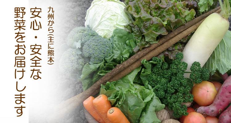 九州から安心・安全な野菜をお届けします。九州野菜通販